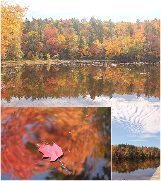 Maine in fall